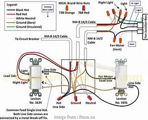 3  Switch Electrical Wiring Diagram Top Wiring Lights In