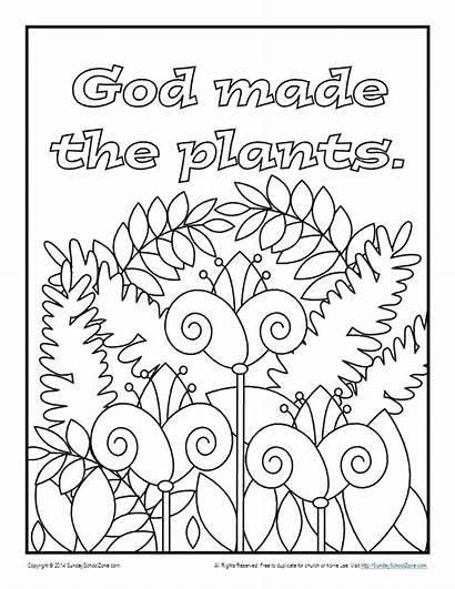 God Coloring Plants Pages Bible Children Creation