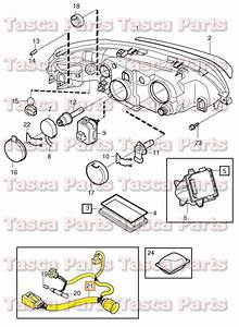Brand New Oem Headlight Wiring Harness 2001
