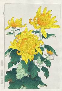 Yellow Chrysanthemum | Kawarazaki Japanese Art | #Japanese ...