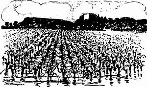 Farm Crops Black And White Clipart - Clipart Suggest