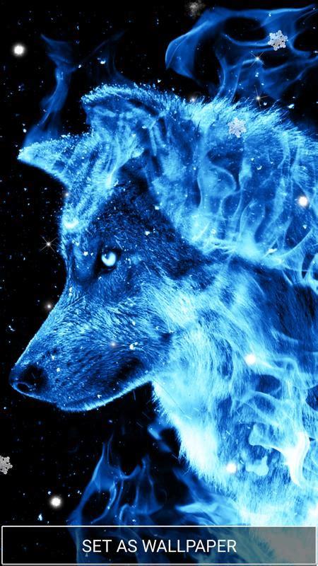 fondo de pantalla de lobo azul  android apk