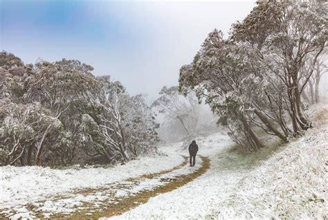 summer snow falls through and nsw sbs news
