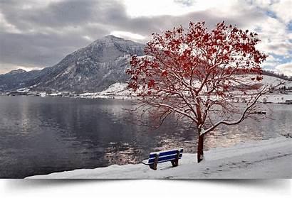 Brianna Briannadamra Damra Landscape Nature Desktop Winter