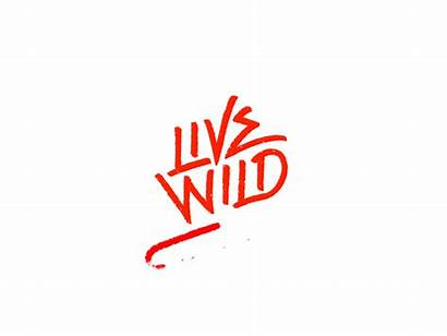 Wild Clothing Animation Animated Trends Dribbble Brand