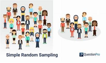 Sampling Random Simple Research Probability Definition Examples