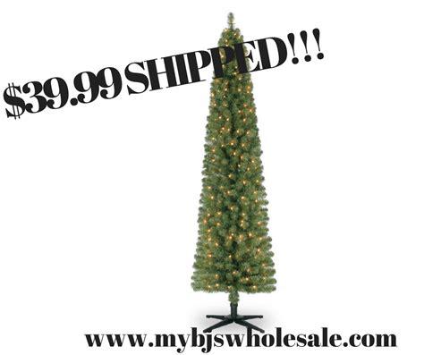 pencil trees christmas by ashland ashland pre lit 7 foot pencil artificial tree only 39 99 shipped reg 100 my bjs
