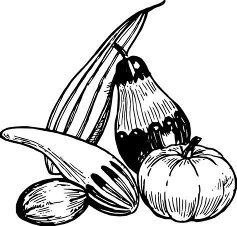 vegetables clip art  clkercom vector clip art  royalty  public domain