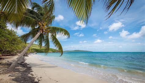 Castaways Of St. Croix, Us Virgin Islands