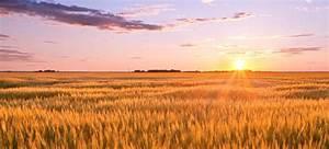 50 Interesting Facts about North Dakota   FactRetriever