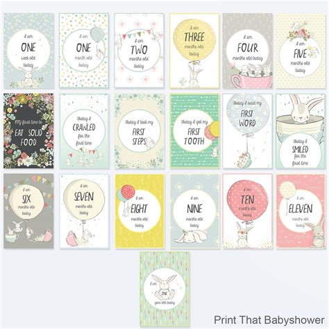 Shop with afterpay on eligible items. 19 Bunny Baby Milestone Cards Baby MIlestone Signs Set of
