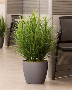 buy silk grass floor plant at petals