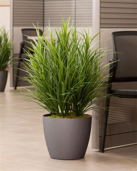 Buy Artificial Grass Floor Plant At Petals