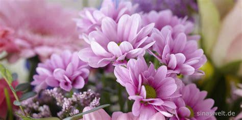 Welche Schnittblumen Halten Am Längsten by Blumen Lange Halten Wohn Design