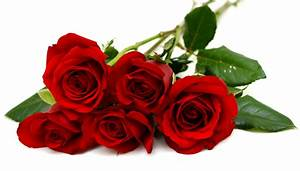 3 12 ou 24 signification du nombre de roses rouges With affiche chambre bébé avec bouquet de fleurs signification