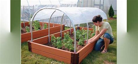 Mini Cold Frames| Gothic Arch Greenhouses