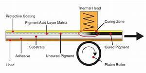 Direct Thermal Printer Labels