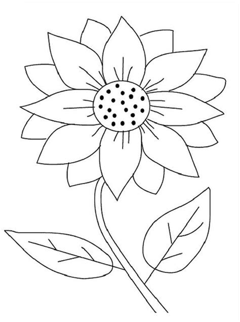 seeding sunflower coloring page  print  coloring pages   color nimbus