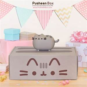 Pusheen Box - Super Cute Kawaii!!