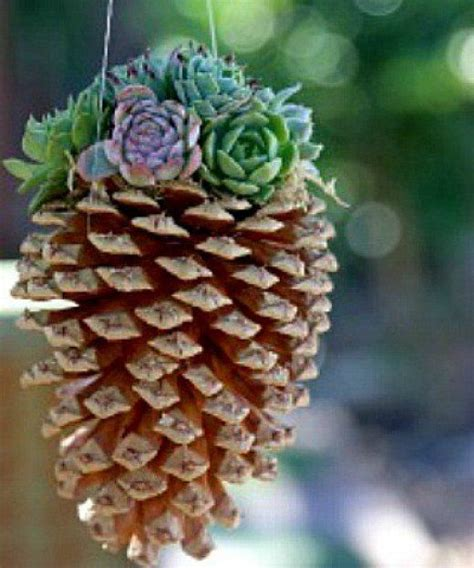 Top 28+ - Pine Cone Crafts For Adults - crafts out of pine