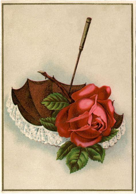 vintage rose lace umbrella image beautiful