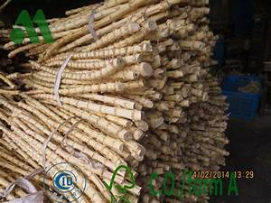 Bambus Rhizome Vernichten : bamboo root cane manufacturer in huzhou china by creative bamboo industrial co ltd id 1060752 ~ Markanthonyermac.com Haus und Dekorationen