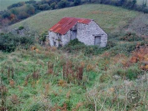 barn owl habitat where do barn owls live missing word puzzle