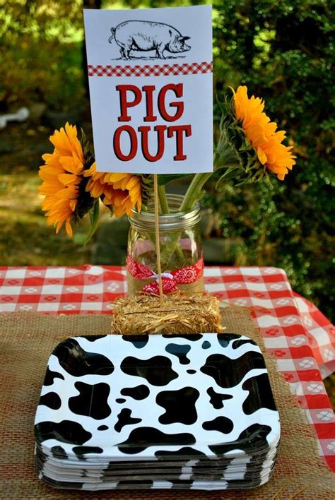 farm animals birthday party ideas photo    catch  party farm bday party