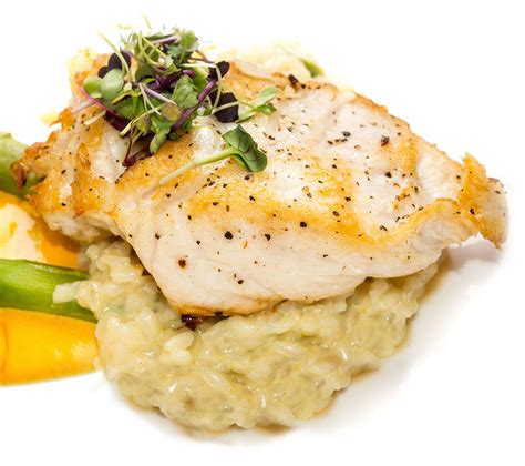 grouper dish fish risotto chefs consider fact because many fun its texture land prepare cloud visitstpeteclearwater