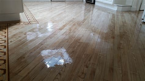 cork flooring urine top 28 cork flooring urine cleaning cat and dog urine stains from carpeting coastal charm