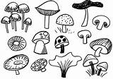 Mushroom Mushrooms Sketches Trippy Drawing Drawings Sketch Google Doodle Doodles Coloring Pages Easy Simple Rogers Casserole Template Hugging Sketching Lilla sketch template