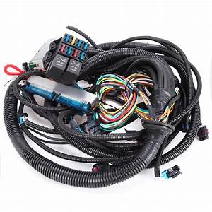 Nice 03  4l60e Standalone Swap Wiring Harness  Dbw  Ls1 Intake Cool 871248810955