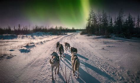 northern lights   yukon activity holiday canadian