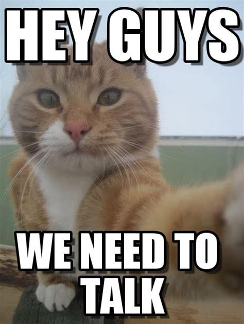 Hey Guys Meme - hey guys selfie cat meme on memegen