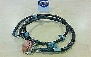Oem License Lamp Wiring Harness