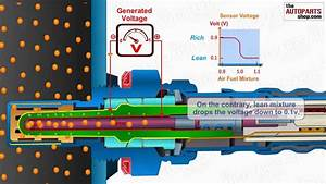 How Oxygen Sensor Works
