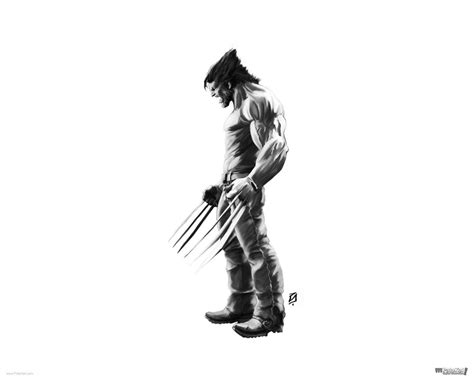 Wolverine Animated Hd Wallpapers - logan wolverine wallpapers wallpaper cave