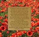 In Flanders' Field | Flanders field, Flanders fields poem ...