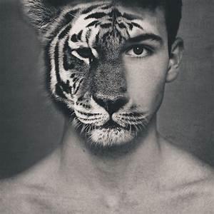 Black and white animal/human manipulation | Photography ...