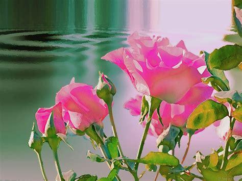 fond ecran fleurs 45053 wallpaper gratuit