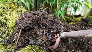 Compost En Appartement : faire son compost soi m me dcm ~ Melissatoandfro.com Idées de Décoration