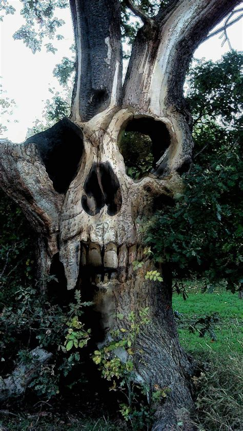 Awesome Carving Just Plain Wow Pinterest Crane