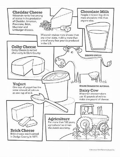 Dairy Cow Coloring Pages Activities Cheese Classroom