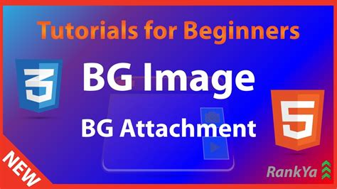 html  css tutorials  beginners css background