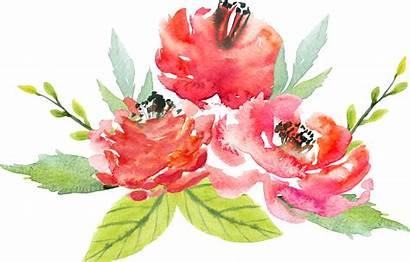 Watercolor Flowers Transparent Flower Floral Clipart Bouquet
