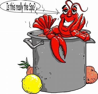 Crawfish Clipart Boil Pot Clip Festival Seafood