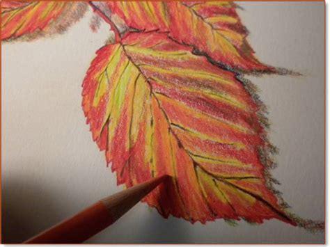 fall leaf drawing  getdrawingscom   personal