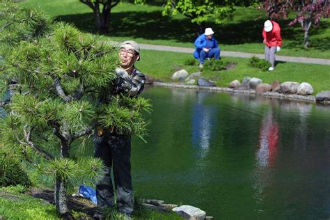 Normandale Japanese Garden Festival 2017 gallery normandale community college