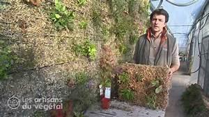 Mur Vegetal Exterieur : comment faire un mur v g tal youtube ~ Melissatoandfro.com Idées de Décoration