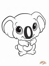 Coloring Pages Zoo Koala Animals Animal Blogx Info sketch template